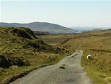 The roads on Mull